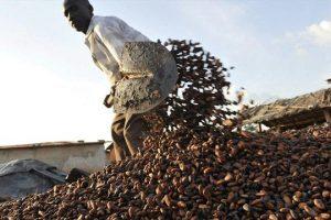 صندوق النقد الدولي يوافق على إقراض ساحل العاج 658.9 مليون دولار