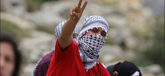 إعتقال أكثر من ٢٠ فلسطيني بالضفة